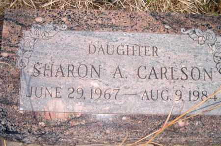 CARLSON, SHARON ANN - Saunders County, Nebraska | SHARON ANN CARLSON - Nebraska Gravestone Photos