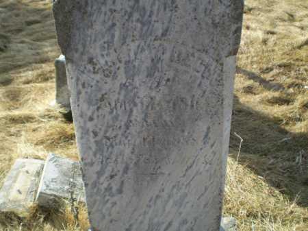 DECH, WILLIAM E - Saunders County, Nebraska | WILLIAM E DECH - Nebraska Gravestone Photos