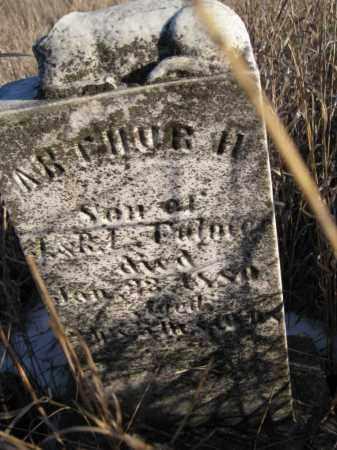 FULMER, ARTHUR H - Saunders County, Nebraska | ARTHUR H FULMER - Nebraska Gravestone Photos
