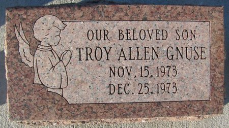 GNUSE, TROY ALLEN - Saunders County, Nebraska | TROY ALLEN GNUSE - Nebraska Gravestone Photos