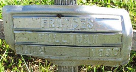 HALLIGAN, FRANCES - Saunders County, Nebraska | FRANCES HALLIGAN - Nebraska Gravestone Photos