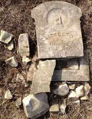 HART, ELIZABETH - Saunders County, Nebraska | ELIZABETH HART - Nebraska Gravestone Photos