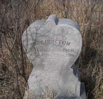 HORTON, RAY - Saunders County, Nebraska | RAY HORTON - Nebraska Gravestone Photos