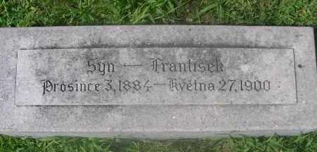 HRDLICKA, FRANTISEK - Saunders County, Nebraska   FRANTISEK HRDLICKA - Nebraska Gravestone Photos