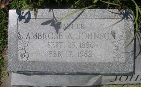 JOHNSON, AMBROSE A. - Saunders County, Nebraska   AMBROSE A. JOHNSON - Nebraska Gravestone Photos
