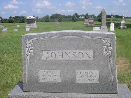 JOHNSON, CHARLES G. - Saunders County, Nebraska | CHARLES G. JOHNSON - Nebraska Gravestone Photos