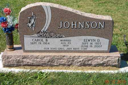 JOHNSON, ELWYN D - Saunders County, Nebraska | ELWYN D JOHNSON - Nebraska Gravestone Photos