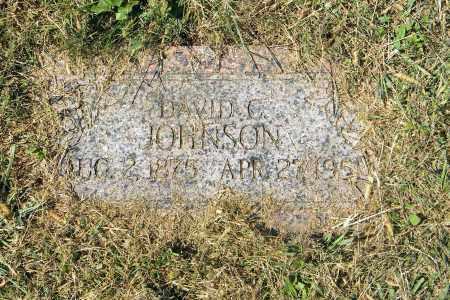 JOHNSON, DAVID C - Saunders County, Nebraska | DAVID C JOHNSON - Nebraska Gravestone Photos