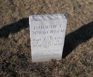 JORGENSEN, DARWIN F. - Saunders County, Nebraska | DARWIN F. JORGENSEN - Nebraska Gravestone Photos