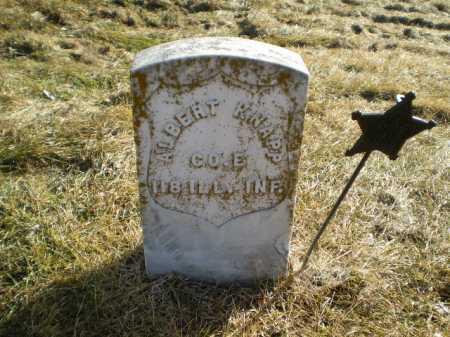 KNAPP, ALBERT W - Saunders County, Nebraska | ALBERT W KNAPP - Nebraska Gravestone Photos