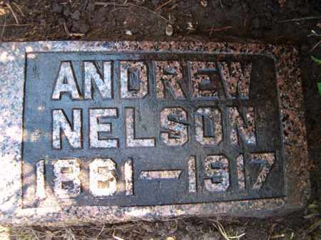 NELSON, ANDREW - Saunders County, Nebraska | ANDREW NELSON - Nebraska Gravestone Photos