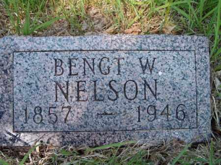 NELSON, BENGT W - Saunders County, Nebraska | BENGT W NELSON - Nebraska Gravestone Photos