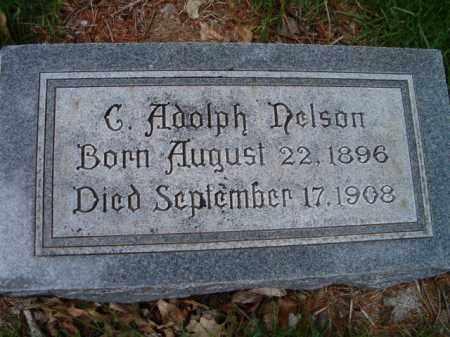 NELSON, C. ADOLPH - Saunders County, Nebraska | C. ADOLPH NELSON - Nebraska Gravestone Photos
