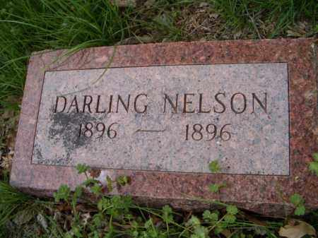 NELSON, DARLING - Saunders County, Nebraska | DARLING NELSON - Nebraska Gravestone Photos
