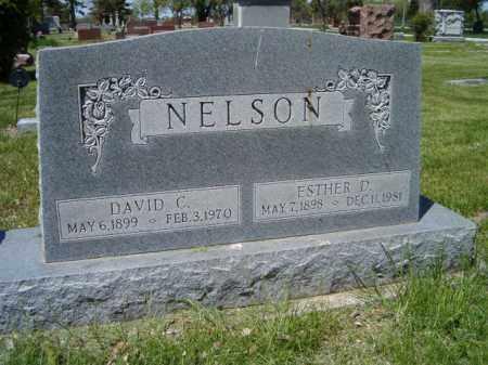 NELSON, DAVID C. - Saunders County, Nebraska | DAVID C. NELSON - Nebraska Gravestone Photos
