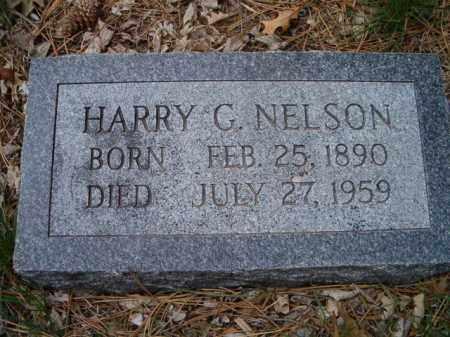 NELSON, HARRY G. - Saunders County, Nebraska   HARRY G. NELSON - Nebraska Gravestone Photos