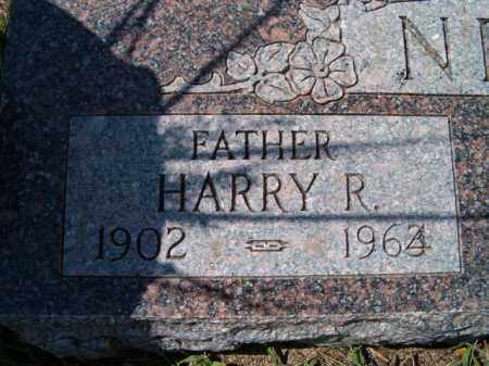 NELSON, HARRY R. (CLOSE UP) - Saunders County, Nebraska | HARRY R. (CLOSE UP) NELSON - Nebraska Gravestone Photos