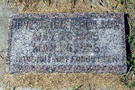 NELSON, THEODORE E - Saunders County, Nebraska | THEODORE E NELSON - Nebraska Gravestone Photos