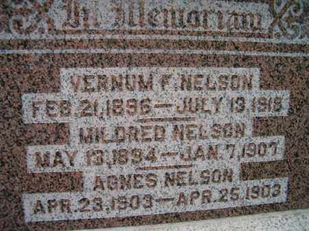 NELSON, AGNES - Saunders County, Nebraska | AGNES NELSON - Nebraska Gravestone Photos