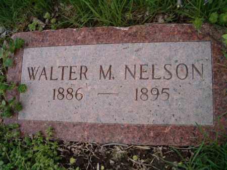 NELSON, WALTER M. - Saunders County, Nebraska   WALTER M. NELSON - Nebraska Gravestone Photos