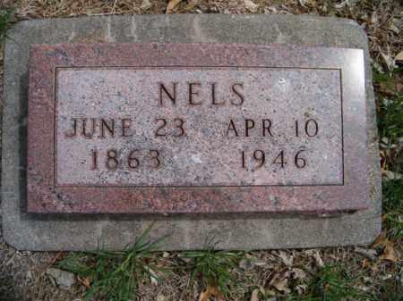 PEARSON, NELS - Saunders County, Nebraska | NELS PEARSON - Nebraska Gravestone Photos