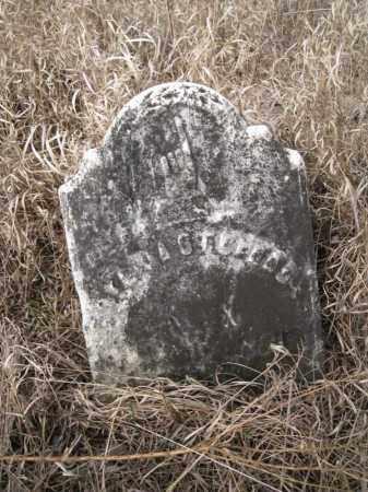 STEPHENS, SYLVIA - Saunders County, Nebraska | SYLVIA STEPHENS - Nebraska Gravestone Photos