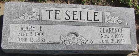 TE SELLE, MARY E. - Saunders County, Nebraska | MARY E. TE SELLE - Nebraska Gravestone Photos