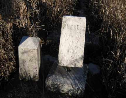 WESTERFIELD, PHEBE - Saunders County, Nebraska | PHEBE WESTERFIELD - Nebraska Gravestone Photos