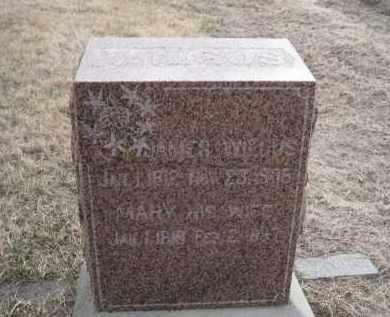 WILGUS, JAMES - Saunders County, Nebraska   JAMES WILGUS - Nebraska Gravestone Photos