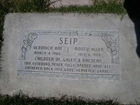 SEIP, MONTEY ALLEN - Scotts Bluff County, Nebraska | MONTEY ALLEN SEIP - Nebraska Gravestone Photos