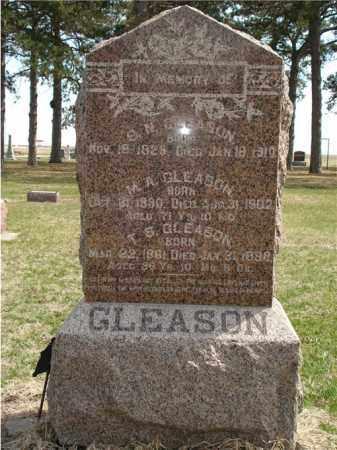 GLEASON, SAMUEL NATHANIEL - Seward County, Nebraska | SAMUEL NATHANIEL GLEASON - Nebraska Gravestone Photos