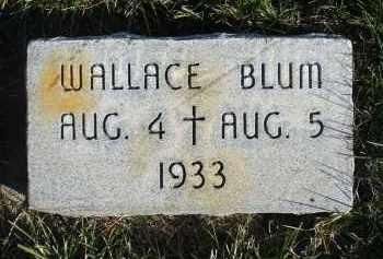 BLUM, WALLACE - Sheridan County, Nebraska | WALLACE BLUM - Nebraska Gravestone Photos