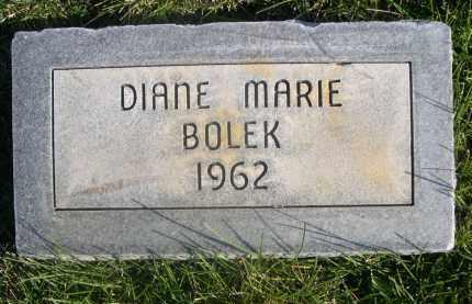 BOLEK, DIANE MARIE - Sheridan County, Nebraska | DIANE MARIE BOLEK - Nebraska Gravestone Photos