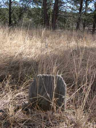 TANNER, LAURA - Sheridan County, Nebraska | LAURA TANNER - Nebraska Gravestone Photos