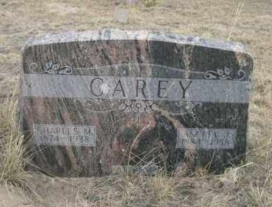 CAREY, ANNETA J. - Sheridan County, Nebraska   ANNETA J. CAREY - Nebraska Gravestone Photos