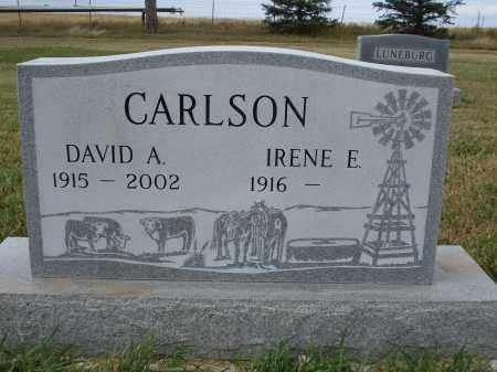 CARLSON, IRENE E. - Sheridan County, Nebraska | IRENE E. CARLSON - Nebraska Gravestone Photos