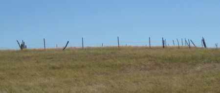 *DAVIS CEMETERY, VIEW FROM NEAR ROAD - Sheridan County, Nebraska | VIEW FROM NEAR ROAD *DAVIS CEMETERY - Nebraska Gravestone Photos