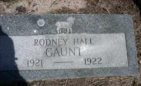 GAUNT, RODNEY HALL - Sheridan County, Nebraska   RODNEY HALL GAUNT - Nebraska Gravestone Photos