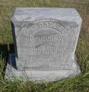 GIBBS, HAROLD W. - Sheridan County, Nebraska | HAROLD W. GIBBS - Nebraska Gravestone Photos