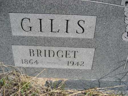 GILIS, BRIDGET - Sheridan County, Nebraska | BRIDGET GILIS - Nebraska Gravestone Photos