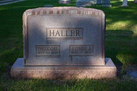 HALLER, THEODORE - Sheridan County, Nebraska | THEODORE HALLER - Nebraska Gravestone Photos