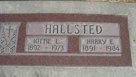 HALLSTED, HARRY E. - Sheridan County, Nebraska | HARRY E. HALLSTED - Nebraska Gravestone Photos