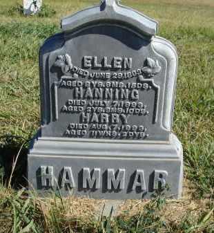 HAMMER, HANNING - Sheridan County, Nebraska | HANNING HAMMER - Nebraska Gravestone Photos