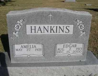 HANKINS, EDGAR - Sheridan County, Nebraska | EDGAR HANKINS - Nebraska Gravestone Photos