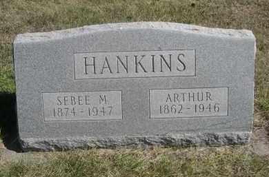 HANKINS, SEBEE M. - Sheridan County, Nebraska   SEBEE M. HANKINS - Nebraska Gravestone Photos