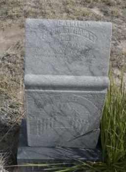 HARVEY, GEORGE W. - Sheridan County, Nebraska | GEORGE W. HARVEY - Nebraska Gravestone Photos