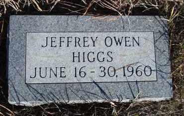 HIGGS, JEFFREY OWEN - Sheridan County, Nebraska | JEFFREY OWEN HIGGS - Nebraska Gravestone Photos