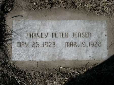 JENSEN, HARVEY PETER - Sheridan County, Nebraska | HARVEY PETER JENSEN - Nebraska Gravestone Photos