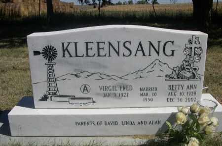 KLEENSANG, BETTY ANN - Sheridan County, Nebraska | BETTY ANN KLEENSANG - Nebraska Gravestone Photos