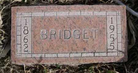 LINDEN, BRIDGET - Sheridan County, Nebraska | BRIDGET LINDEN - Nebraska Gravestone Photos